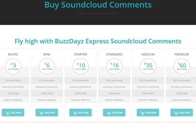 #1-buzzdayz-mp-product-sc-comments