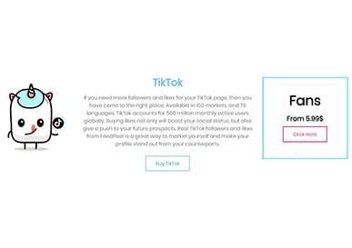FeedPixel Buy TikTok Followers