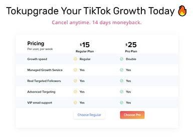TokUpgrade Buy TikTok Followers