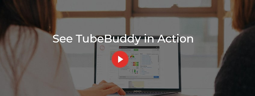 TubeBuddy Features in Details