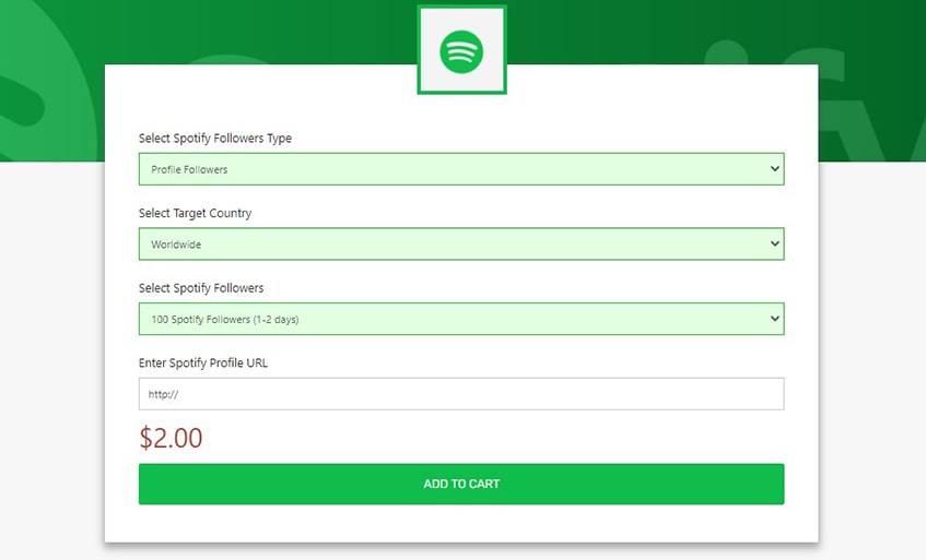 Media Mister Network Services Spotify