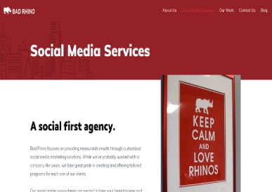 bad-rhino-inc-sm-services1