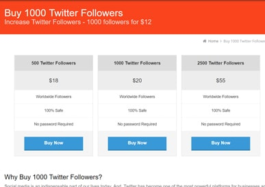 buy1000followers-buy-twitter-followers1