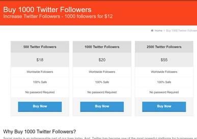 buy1000followers-buy-twitter-followers1