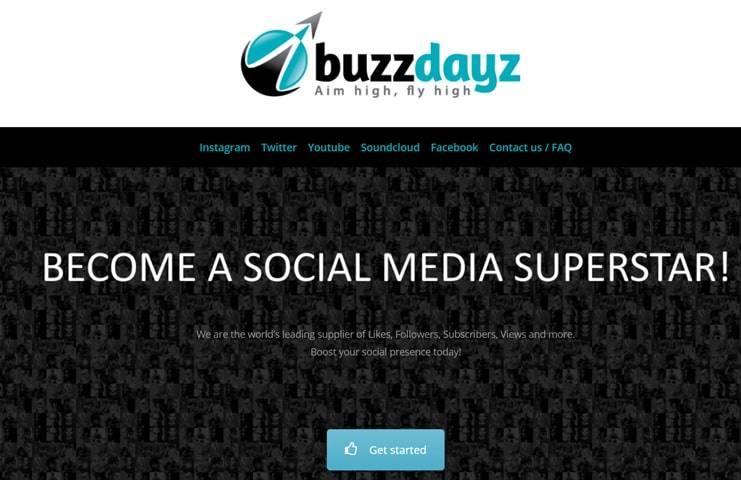 #3 BuzzDayz