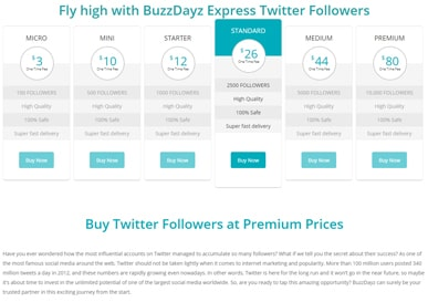 buzzdayz-buy-followers1