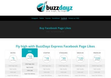 buzzdayz-buy-followers2