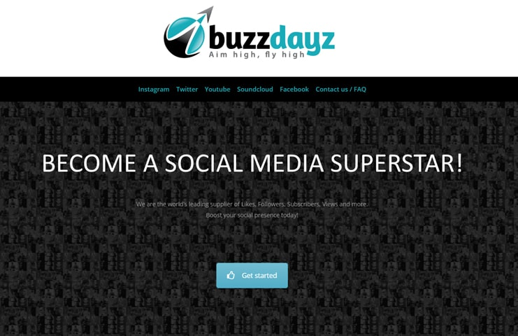 #5 Buzzdayz