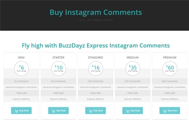 buzzdayz-instagram-comments1